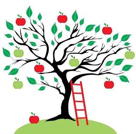 Vector illustratie van een appelboom met een ladder. Stock Illustratie