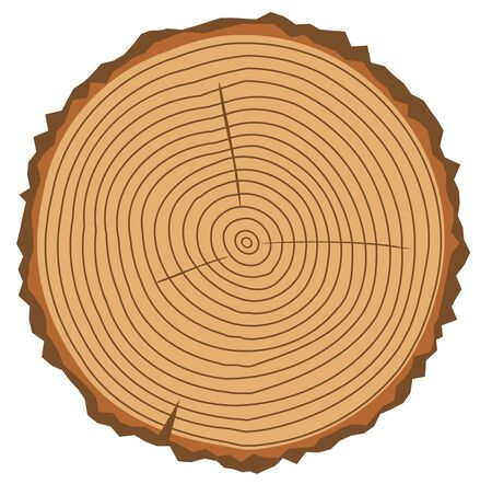 Vector illustration of a wood rings.Tree rings. Abstract background. Painted wood texture. Vectores