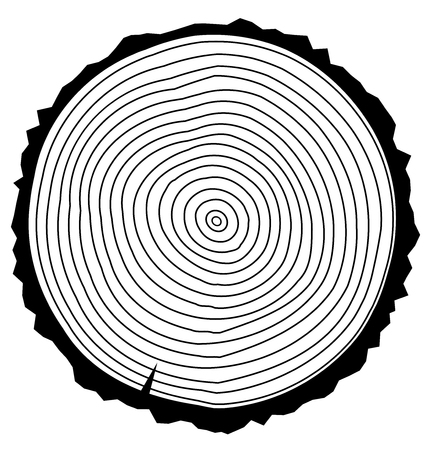 wooden cut: Vector illustration of a wood rings.Tree rings. Abstract background. Painted wood texture. Illustration