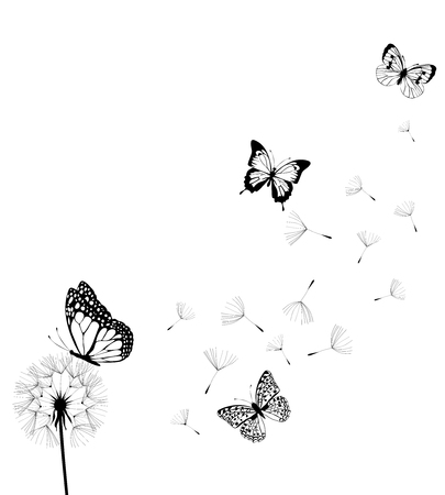 Vector illustration of dandelion silhouette with butterflies
