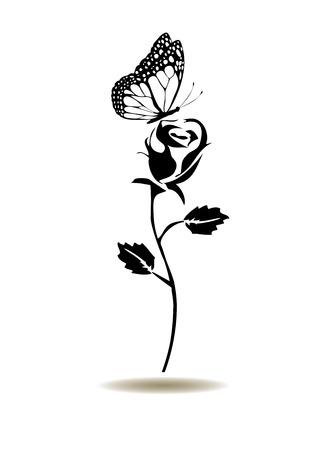 rosas blancas: Ilustración vectorial de rosa silueta con mariposa