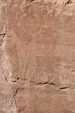 Photo of ancient petroglyphs carved on rocks