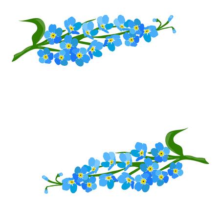 Vektor-Illustration von einem vergessen mich nicht Blume Standard-Bild - 77572183
