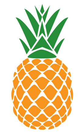 vector illustration of a fruit pineapple isolated on white background
