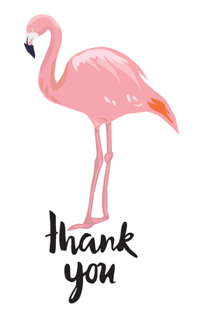 vector illustration of a thank you card with flamingo