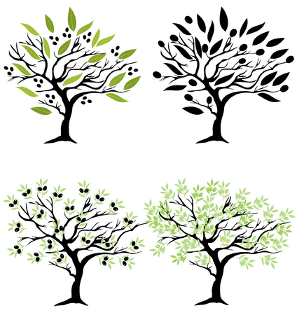 vector illustration of olive trees set isolated on white background