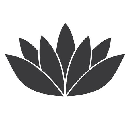 pistil: vector illustration of lotus flower isolated on white background