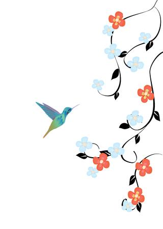 vector illustration of hummingbird and flowers