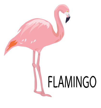 vector illustration of a pink flamingo silhouette