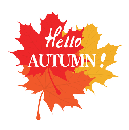 vector illustration of hello autumn background