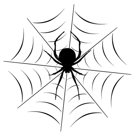 vector illustration of a spider on the web.