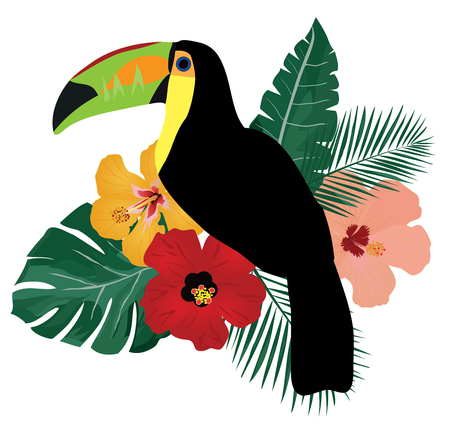 vector illustration of a tropical toucan birds with tropical flowers