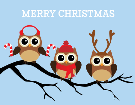 vector illustration of fun Christmas owls. Merry Christmas background.