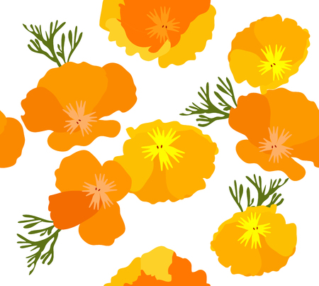 vector illustration of California state yellow and orange poppies. Ilustração