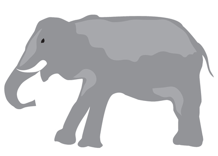vector illustration of an elephant isolated on white background. Illusztráció