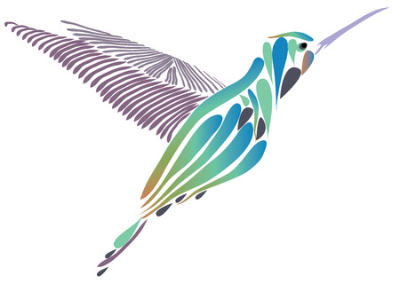 vector illustration of a hummingbird isolated on white background.