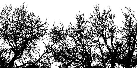 vector illustration of trees background. nature concept. Ilustração
