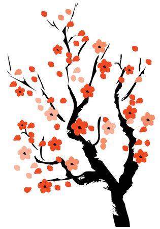 vector illustration of a cherry tree in blossom on white background.  Illustration