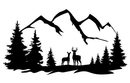 vector white tail deer and a doe in the forest