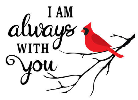 vector illustration of I am always with you, cardinal bird in the tree branch