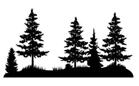 vector illustration of Pine trees, wilderness, outdoors background. Forest.