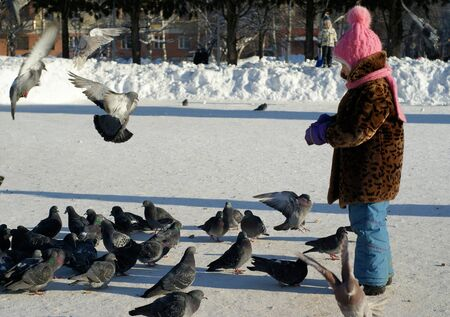 Little girl feeding pigeons with bread in winter