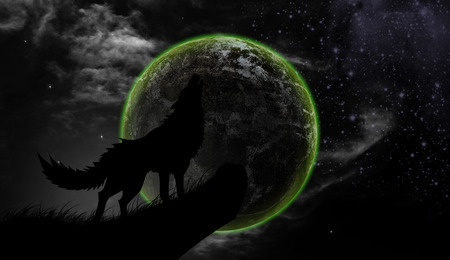 Wolves howl Full Moon
