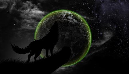 howl: Wolves howl Full Moon