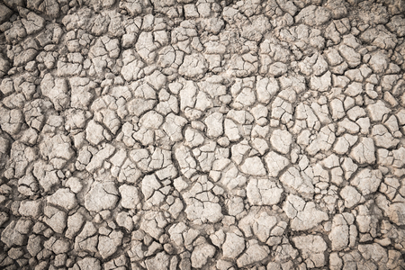 fissures: Background soil fissures Stock Photo