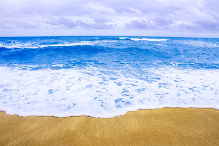 seacoast: Seacoast Stock Photo
