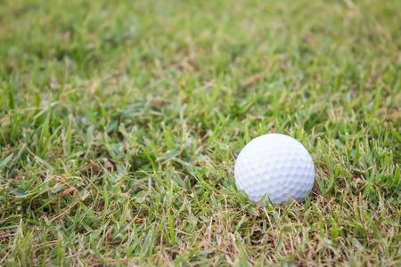 golfball: golf-ball on course Stock Photo