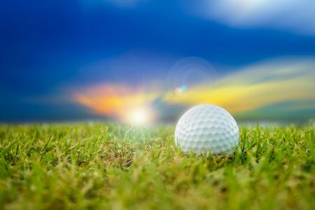 golf course: golf-ball on course Stock Photo