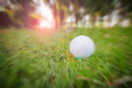 golfball: Zoom golf-ball on course Stock Photo