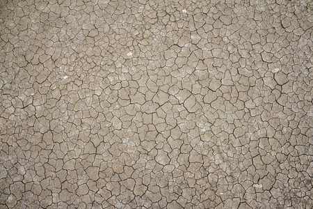 soil erosion: Dried and Cracked ground