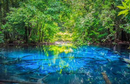 Sa Nam Phut is beautiful spring pool in the forest national park at Krabi province, Thailand