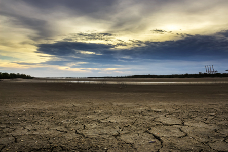 barren land: Land with dry and cracked ground. Desert