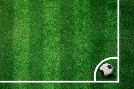 grass field: Conner of football field