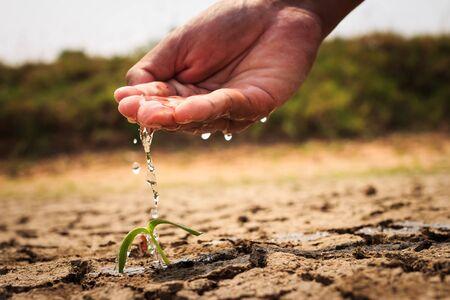 barren: Hand watering the ground barren Stock Photo