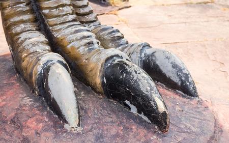 paleontologist: dinosaur foot