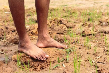 barrenness: A young man on the drought. Stock Photo