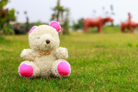 sit: bear sit on the grass