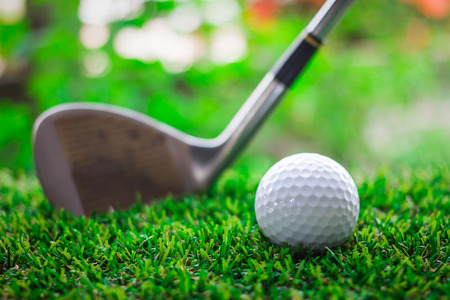 caddie: Golf club and ball on green grass