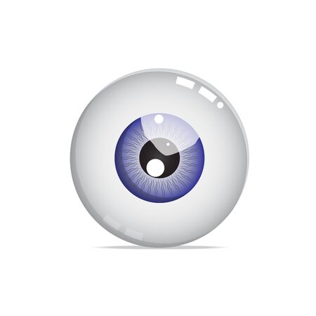 eye ball: Nice blue eye ball