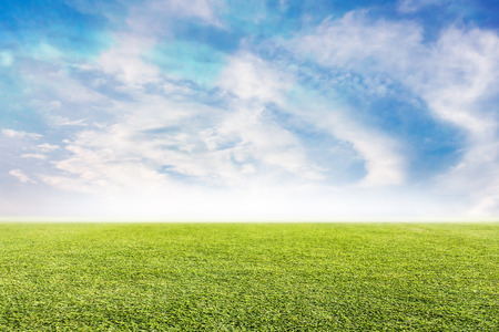 Green lawn and sky background Stock Photo