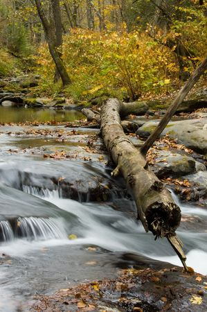 west virginia: Autumn Stream, West Virginia Stock Photo