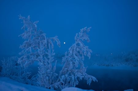 Frozen Moonlight Down By The Chena River photo