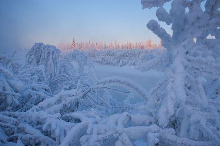 Heavy Rime Ice Coats The Riverside