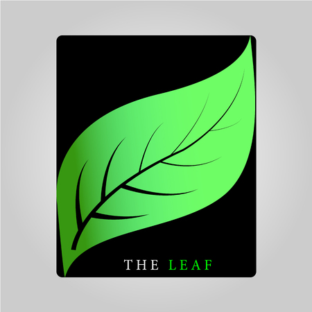 This logo has a leaf. This logo is good to use as a company logo or can also be used as an application logo. 版權商用圖片 - 117851284