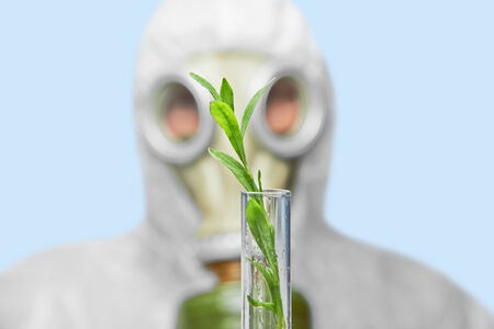 Scientist in respirator holds test tube with green plant, focus on plant photo