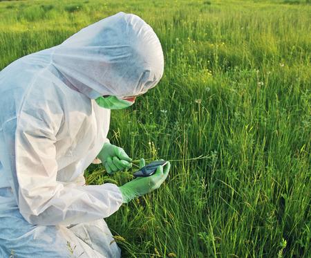 field glass: Scientist in biohazard uniform examines green plant on summer meadow